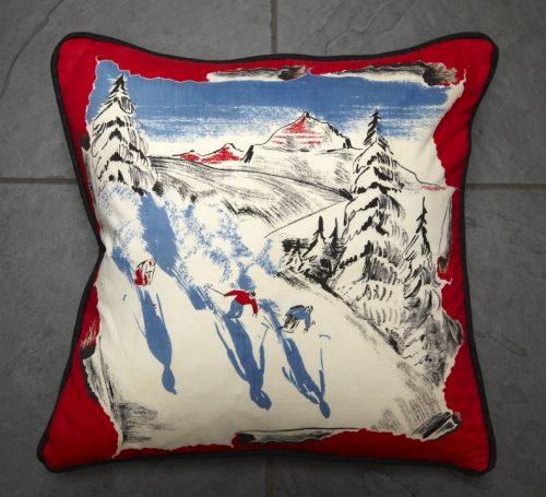 Ski Cushion